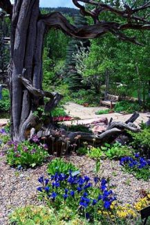 Betty Ford Alpine Gardens, located in the heart of Ford Park, is the highest botanical garden in the world, providing free access to thousands of visitors.