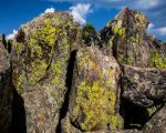 The varied colors dotting this cliff face indicate different species of lichen common to the Rocky Mountains.