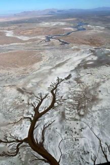 The Colorado River experimental pulse flow (top), making its way through the desiccated Delta to meet the Gulf of California tidal channel (bottom).