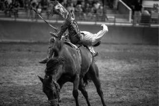 Devan Reilly, of Sheridan, Wyo., tries his best to stay on during the bareback riding competition at the Fair and Rodeo in Eagle. Reilly has been riding professionally for six years and has been competing at this rodeo for three.