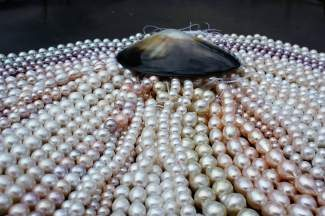 See pearls of every color from around the world at Karats of Vail this weekend and learn about the mystifying orbs from pearl specialist Koji Kawamoto at 2 p.m. at La Tour on Saturday.
