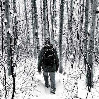 Peter Osorio heads into the snowy aspens.
