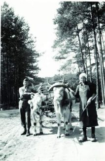 Photo courtesy Eagle County Historical Society and Eagle Valley Library District
