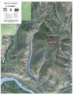 This map, courtesy of the town of Avon, shows the latest plans for a proposed trail system in the area of open space known as the West Avon Preserve. While the existing trail (pink) at Beaver Creek Point shows a proposed green overlay trail, that particular improvement is likely to be forgone as the general sense from a recent open house meeting is that improvement isn't necessary, according to town officials.