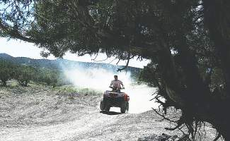 The Forest Service recently decided to authorize all-terrain vehicle use on 143 miles of roads that had previously been open only to road-legal vehicles.