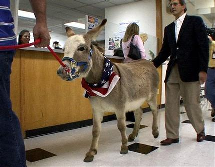 Donkey Becomes Witness In Dallas Dispute Vaildaily Com