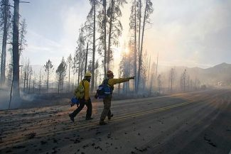 Byron Hetzler/Sky-Hi NewsFirefighters working the Onahu fire in Rocky Mountain National Park look for hot spots while walking down Trail Ridge Road where the fire crossed the highway late on Saturday afternoon.
