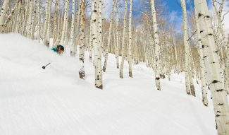Connor Walberg | Vail ResortsAustin Tafoya rips through an aspen glade on Vail Mountain on Friday. Vail reported 11 inches of new snow Friday morning.