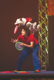 Special to the DailyThirteen dogs will take the Vilar Center stage Friday for The Stunt Dog Experience. The traveling canine troupe puts on around 600 shows a year.