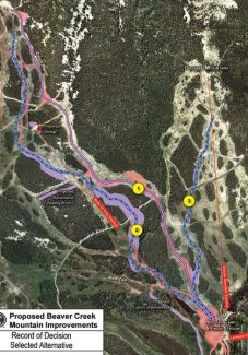 Special to the DailyThe dotted blue line at left shows the proposed women's downhill race course on Beaver Creek Mountain. The dotted blue line at right shows the proposed women's giant slalom course. The purple line in the center shows the existing men's Birds of Prey race course.