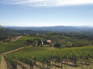 Centuries-old vineyards and rolling hillsides welcome Trek Travel bike tour adventurers to the Tuscany region of Italy.