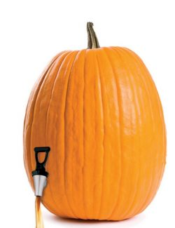 Special to the DailyFor instructions on how to make a do-it-yourself pumpkin keg and other fall party-planning ideas, visit www.celebrations.com.