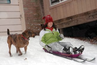 Tim Potter/Special to the DailyTim Potter's daughter slides down the snow on a homemade ski sled.