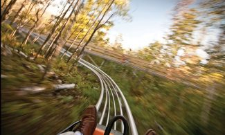 "Vail Resorts constructed the ""Forest Flyer"" at Vail Mountain this summer. This rendering depicts what it will be like next summer traveling on the alpine coaster. Aspen Skiing Co. applied to construct one at Snowmass."