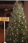 The Trees of Hospice fundraiser event is tonight in Eagle. All are welcome to help celebrate and remember family and friends. Come to the Eagle library from 6 to 7 p.m.