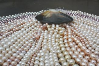Special to the DailyPearls can come in a pastel rainbow of shades: Peacock, pistachio, aubergine, silver, green and blue from Tahiti, white and gold from the South Sea and freshwater from streams across the globe, in both round and Baroque shapes.