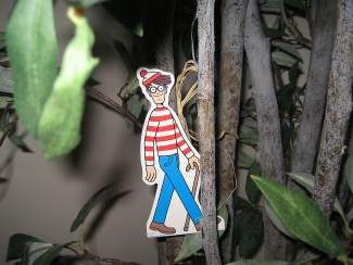Look for Waldo at 19 Riverwalk of Edwards businesses for a chance to win prizes on July 31 at the Bookworm of Edwards.