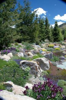 National Public Gardens day is Friday, May 9. Betty Ford Alpine Gardens invites you to celebrate and understand the important role public gardens play in promoting environmental stewardship and awareness, plant and water conservation, and education in communities nationwide. Free entry into participating gardens is available. Visit the American Public Gardens association at apga.org for more information.