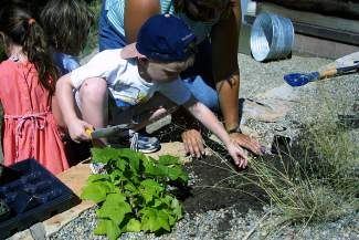 On Friday, Aug. 8, the Betty Ford Alpine Gardens is hosting the final Magical Mornings — a half-day camp for kids. Children will learn about the gardens and build their very own fairy garden to take home. Camp is from 9 a.m. to noon and cost $35. To register, please call 970-476-0103, ext. 3.