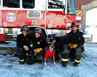 Hi, my name is Leo, and these are my firemen friends who support rescuing dogs like me. After spending almost nine years in a puppy mill I was finally rescued, and now I'm trying to give back by raising money through kisses.  That's right, kisses … for $1 you can come kiss me in person, blow me a virtual kiss, r send me a Valentines card with your kiss in it. The money we raise will go toward another rescue mission through the National Mill Dog Rescue. These are the nice people that rescued me, and we have to go get more of my friends who were left behind. For more information, you can go to my Facebook page, www.facebook.com/LovableLeopuppymillsurvivor, or youcaring.com/kiss_leo. Thanks for your support!