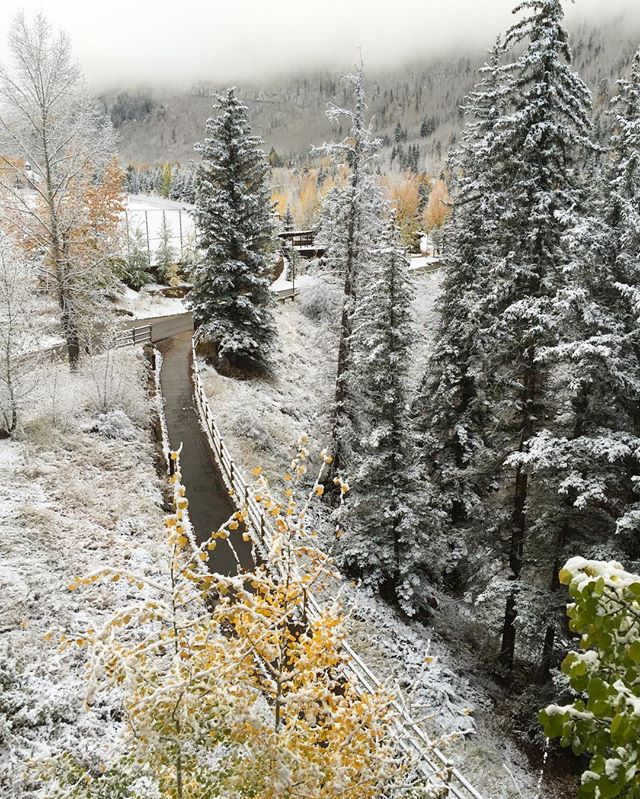 Weather check Fall/Winter #fall #winter #snow #vail #vaillive #thewrenatvail