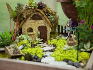 Fairy Garden Workshop at the Wildflower Farm! Come join us for a Fairy Garden Workshop at the Wildflower Farm in Edwards (33601 U.S. Highway 6, Edwards, CO) on Saturday, Jan. 14, 1 - 2:30pm. In this 90-minute workshop, we will design and create our perfect fairy worlds, using a fun selection of recycled containers, miniature plants, stones and fairy accessories. We will also learn how to care for our fairy gardens so they continue looking great long after you leave the Wildflower Farm! $25.00/person. Great for all ages! Spaces are limited. Call us at (970) 926-5504 to reserve your spot!