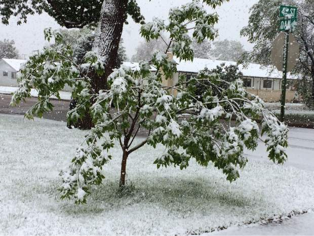 Snow started falling in Greeley and Windsor about 1 p.m. Thursday.