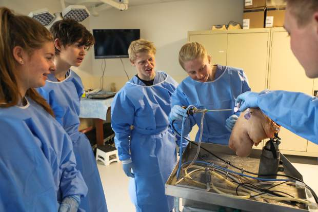 Four students from Vail Ski & Snowboard Academy observe rotator cuff surgery on a cadaver shoulder on Tuesday in Vail. The four were selected based on their grades as a special privilege to learn about orthopedic surgery.