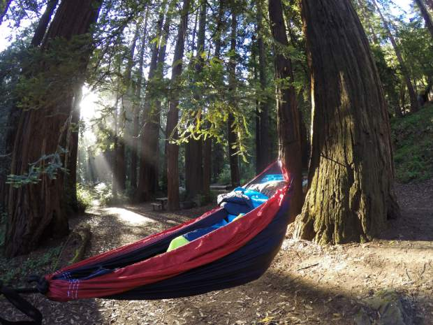 The campsite in Big Sur had redwood trees so big that normal hammock straps wouldn't fit around them.