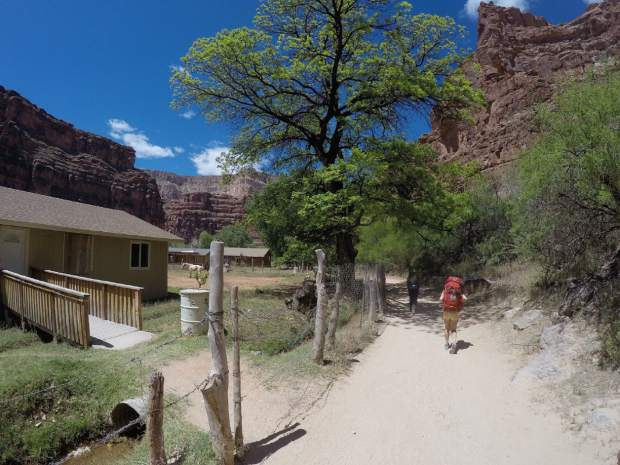 After checking in at the Supai village, it's another 2 miles to the campsite.