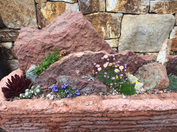 Build Container Gardens In Vail On Monday June 5 Vaildaily Com