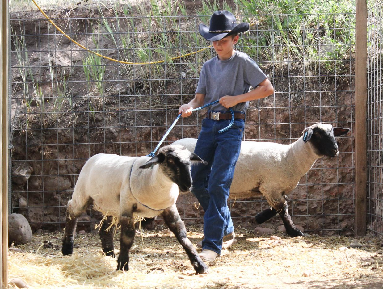 Richard Huck Palmiter, 11, catches his sheep Alice, while his other sheep Gunner makes a break for other side of the pen on Friday, July 14, in Gypsum. Alice and Gunner will be auctioned off as part of the 4H Club livestock program Palmiter participates in. The money from the auction will be put towards lambs for next year and Palmiter's college fund.