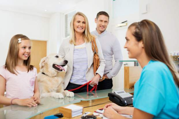 Dr. Charlie Meynier, a veterinarian in the valley for more than 10 years, says preventative care for dogs is the best way to go. There's also been a growing popularity in pet insurance.