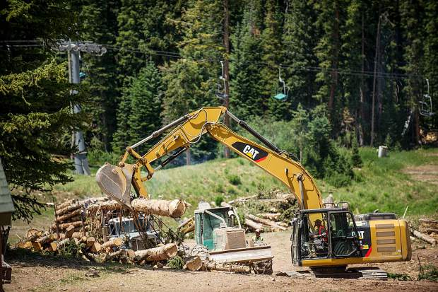 Workers remove trees near Elk Camp at Snowmass Ski Area on July 7 to make space for Aspen Skiing Co.'s future adventure center,