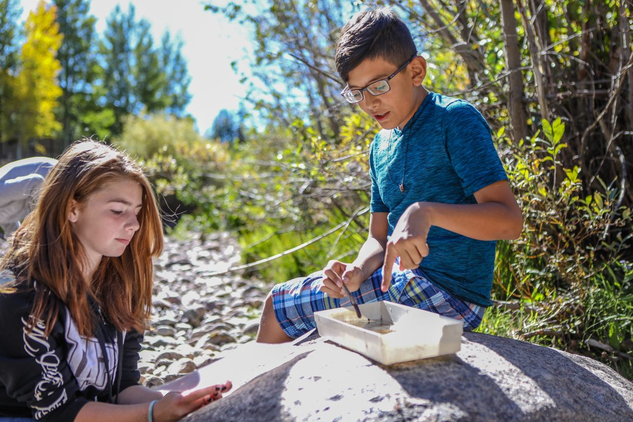 Daniel Velasco points out the macro invertebrates to Addie Wilson while studying the components of Gore Creek during a service project with the Town of Vail Thursday, Sept. 21, in East Vail. The variety and number of living organisms in Gore Creek indicates how healthy the creek is.
