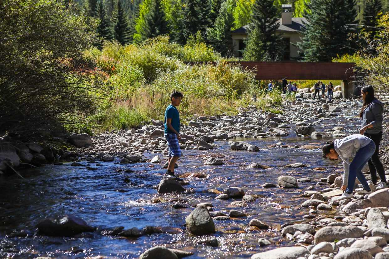 Students collect water to sample the living organisms in Gore Creek while learning about the creek on a hands-on learning project Thursday, Sept. 21, in East Vail. The students not only learn an educational component to the creek, but also learn how they can better their community by improving the health of Gore Creek.