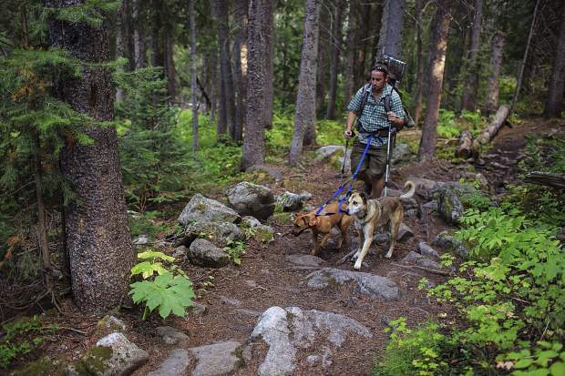 Silverthorne resident Jon Kessel hikes with his dogs, Capri and Yolo, on the Gore Range Trail in the Eagles Nest Wilderness near Silverthorne on Friday, Sept. 1.