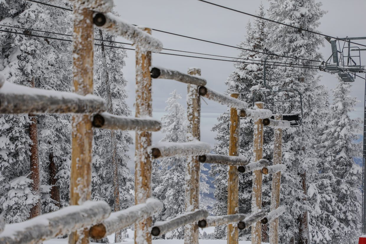 Trees and fences are coated in snow at the top of Blue Sky Basin on Saturday, Jan. 13, in Vail. Blue Sky reported nearly nine inches in 24-hours prior to opening.