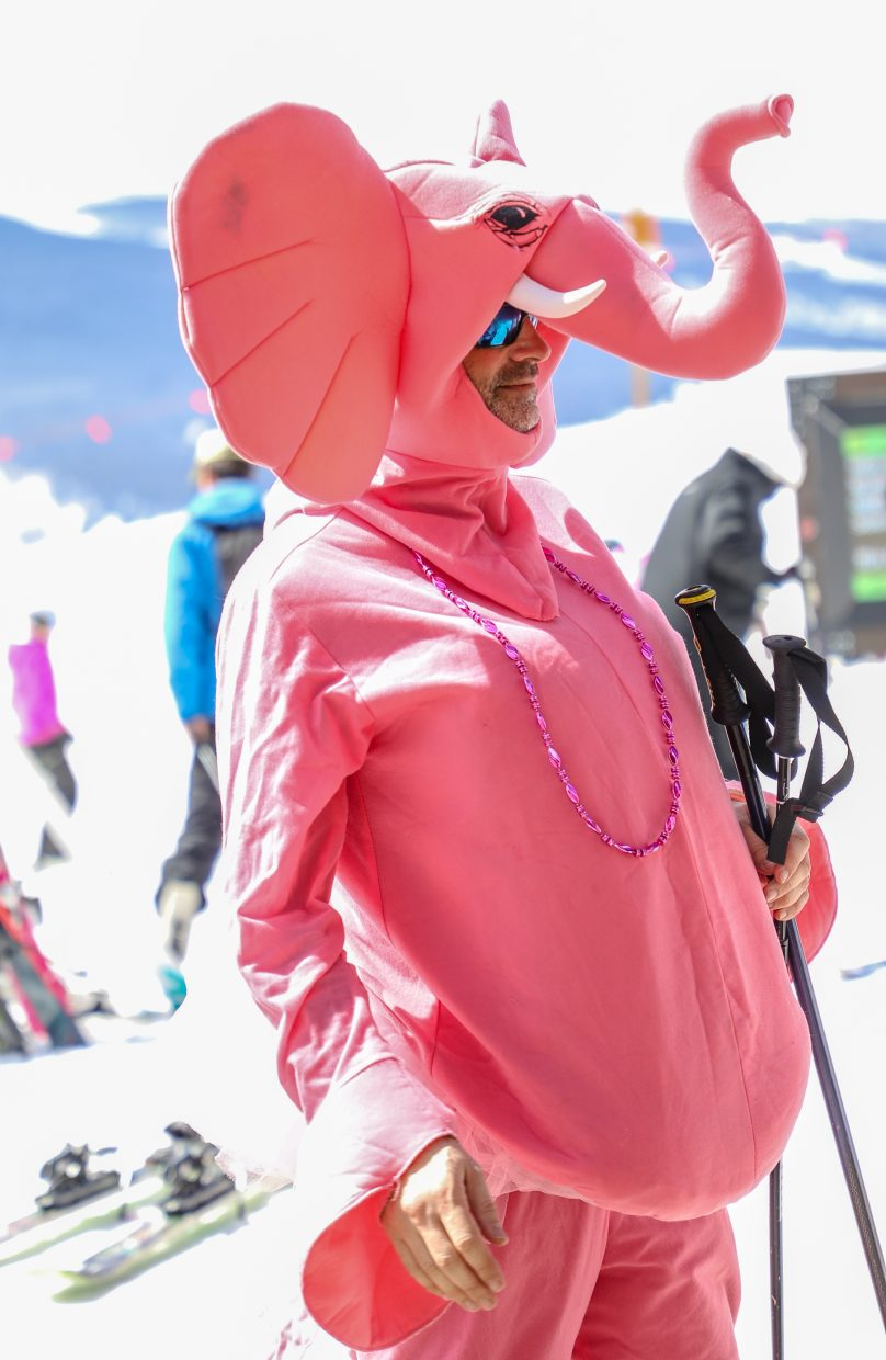 Stan Horowitz of Team Flamingo gets ready to ski down Lionshead during Pink Vail on Saturday, March 24, in Vail. The family, from New York, has been participating in Pink Vail for three years.