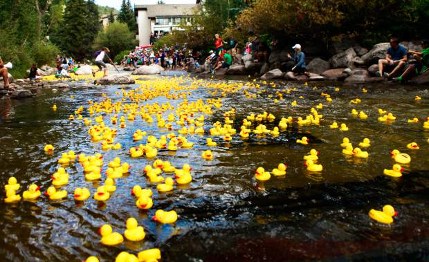 Rubber ducks make the journey down Gore Creek for the annual Rubber Duck Race sponsored by the Vail Rotary Club during Labor Day Weekend.