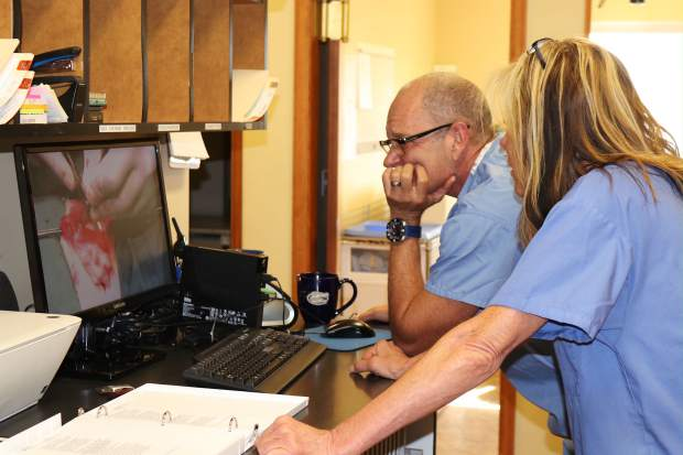 Stephen Sheldon and the Gypsum Animal Hospital team are excited about their new stem cell therapy, which is the first of its kind in Eagle County. Sheldon says arthritis can be a very frustrating condition for all of the active animals in the mountains.