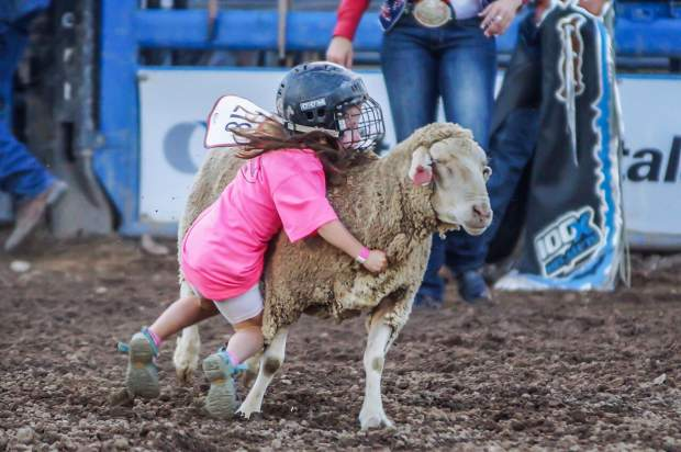 Mutton Bustin' is one of the most popular events during rodeo performances.