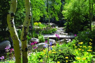 Betty Ford Gardens in Vail: Community center and host to educational programs for adults and children