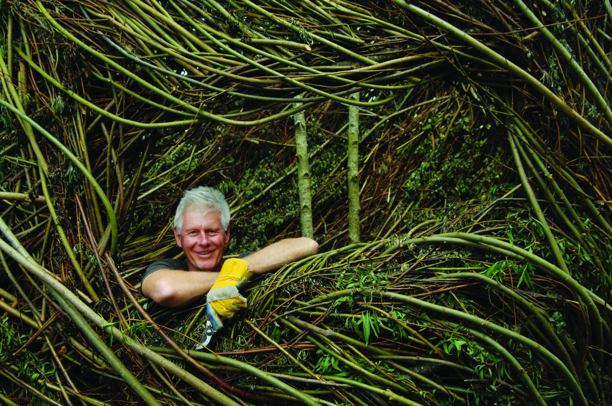 Patrick Dougherty at Sculpture in the Parklands