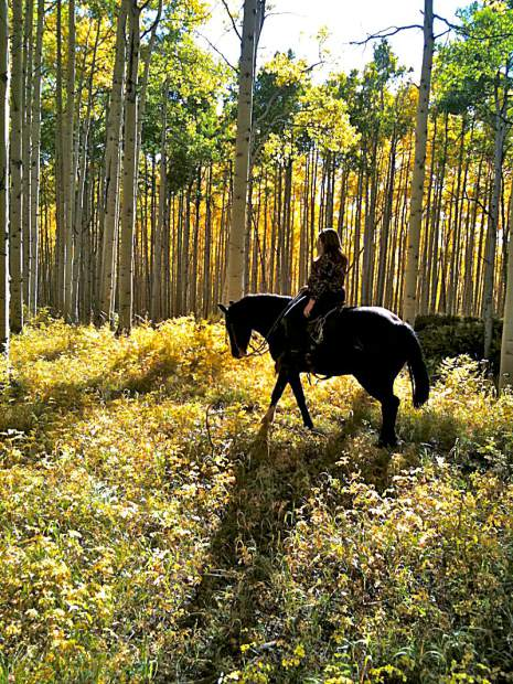 Vail Stables leads horseback rides for kids ages 8 and older through the Rocky Mountains.