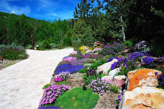 The Betty Ford Alpine Gardens have over 3,000 species across 5 acres in Vail's Ford Park, including an Education Center and Alpine House, and activities for all ages.
