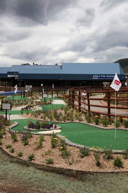 Gore Creek Mini Golf features an animal theme and is a nine-hole course.