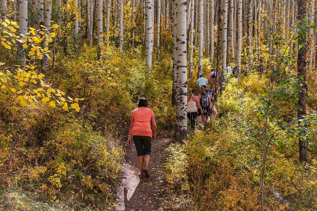 The fall foliage was in full display on Sunday, Sept. 16, as people made their way around Beaver Creek Mountain for the Hike, Wine and Dine event.