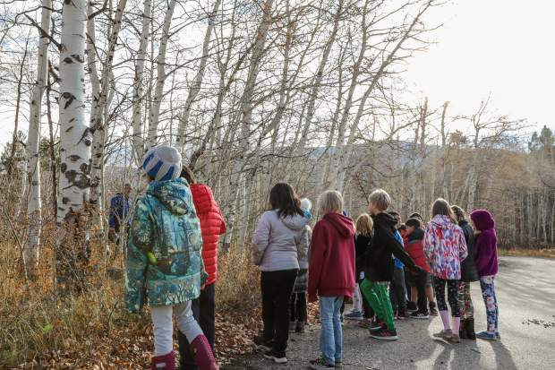 Students check out the trees that were used for John Fleming's artwork Friday, Oct. 26, in Minturn. Looking at real aspens, they are better able to understand his ideas.