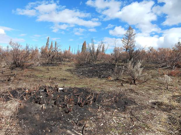 The lower slopes of Basalt Mountain had only spot fires. The real damage starts 3-plus miles up the road from the prime parking lot.